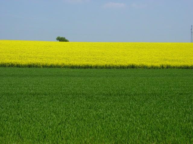 Pve 2009 plan v g tal pour l 39 environnement chambre d - Chambre agriculture orne ...